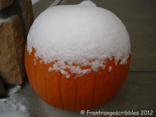 snow on pumpkin