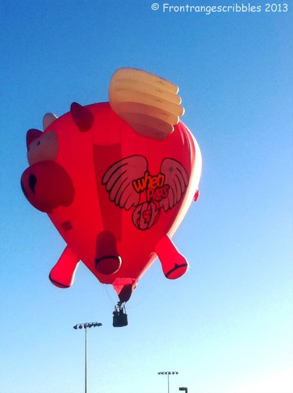 Pig Hot Air Balloon